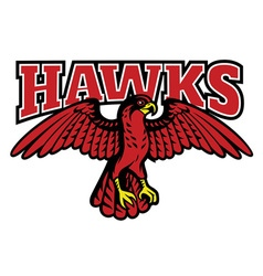 red hawk mascot vector image
