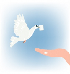 Dove with letter and palm vector