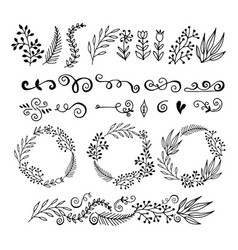 collection floral graphic design elements vector image vector image