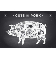 Cut of meat set poster butcher diagram scheme vector