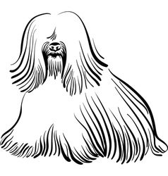 dog sketch vector image