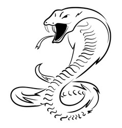 hand draw king cobra vector image vector image