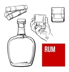 Rum bellied bottle hand holding shot glass and vector image