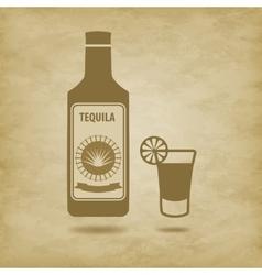Bottle of tequila vector