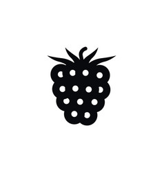 isolated blackberry icon freshness element vector image vector image