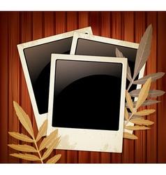 polaroids vector image vector image