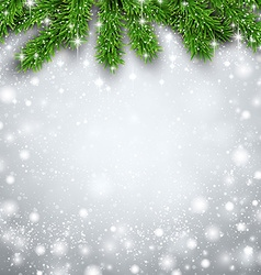 Fir christmas background vector