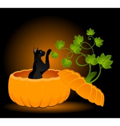 Cat in pumpkin vector