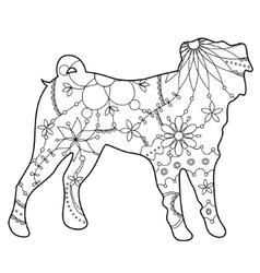 Pug dog coloring vector