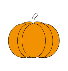 Sketch color silhouette pumpkin fruit food vector