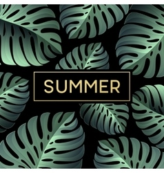 Tropical monstera leaves design for text card vector