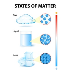 States of matter vector