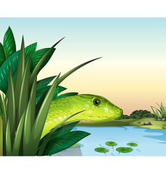 A snake at the pond vector