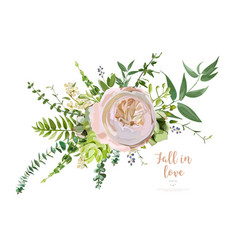 Bouquet element of pink garden rose green vector