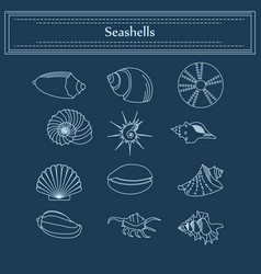 set of seashells in a linear style vector image vector image