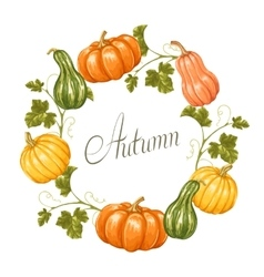 Frame with pumpkins decorative ornament from vector