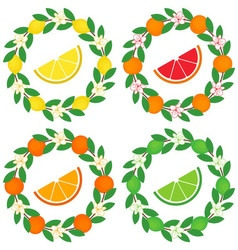 Citrus Wreath vector image