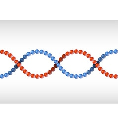 Dna red blue vector
