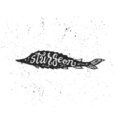Sturgeon lettering in silhouette vector image