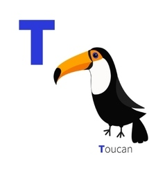 Letter t toucan toco big yellow beak beautiful vector