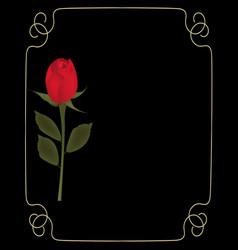 Red rose on black background with golden frame vector