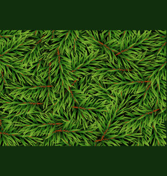 realistic fir branches background christmas tree vector image