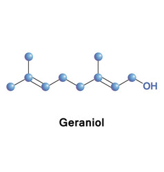 Geraniol is a monoterpenoid and an alcohol vector