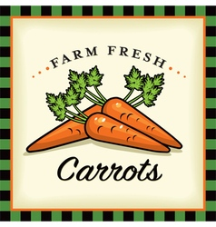 Farm fresh carrots vector