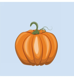 Fresh Pumpkin on blue vector image vector image