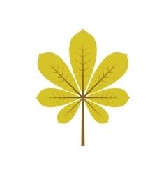 Leaf of chestnut vector