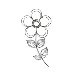 magnolia flower decoration line vector image