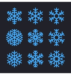 Snowflakes Set for christmas winter design vector image vector image