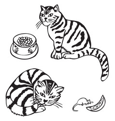 cat and mouse with cheese vector image