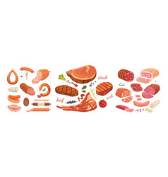 different types of meat products set isolated set vector image vector image