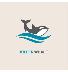 Killer whale icon vector