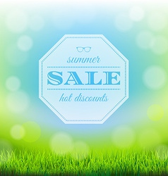 Summer Sale Banner With Green Grass vector image