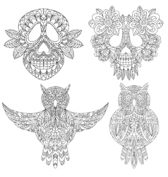 Owl and skull sketchs vector