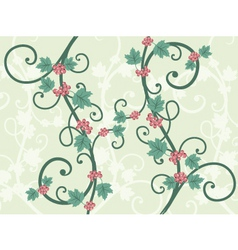 decorative vines vector image