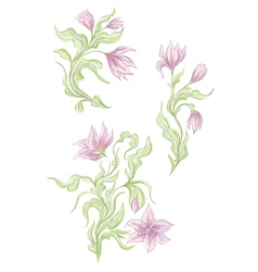 Hand drawn tender spring flowers vector image vector image