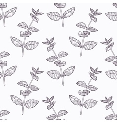 Hand drawn mint branch outline seamless pattern vector