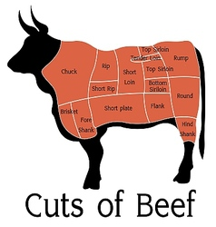 Cuts of beef vector