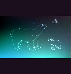 ursa major and ursa minor constellation in night vector image