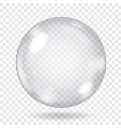 Big transparent glass sphere vector image vector image