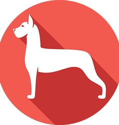 Great dane dog icon vector