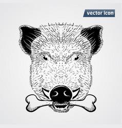 vild boar vector image