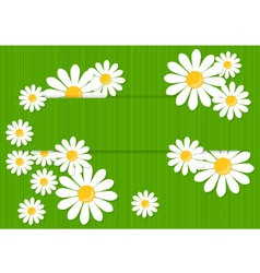 Greeting card with daisies vector