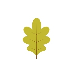 Green oak leaf isolated vector
