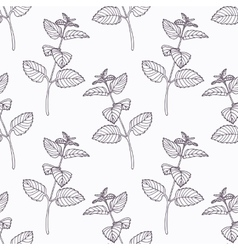 Hand drawn melissa branch outline seamless pattern vector image vector image