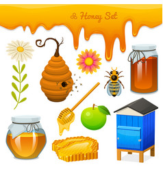 Honey set bee and hive spoon and honeycomb hive vector