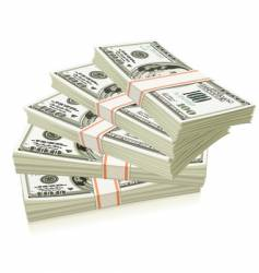 packs of dollars vector image